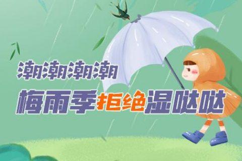 雨雨雨!潮潮潮!伊岛除湿机拒绝梅雨季湿哒哒